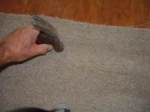 Finish carpet at laminate transition