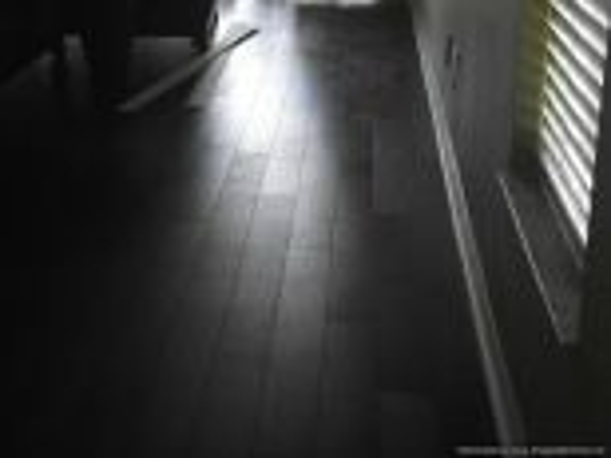 Lamton Virginia walnut laminate flooring, showing defect on the finish
