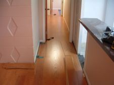 I installed Quick step Eligna, Canyon oak, 8mm in the living room all the way down the hall