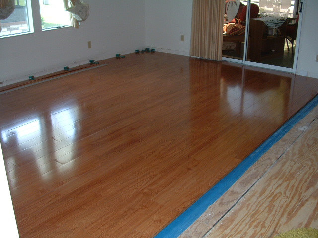 Latest Project Vanier Laminate Tampa Bay