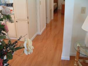 Vanier laminate flooring installed in hallway photo